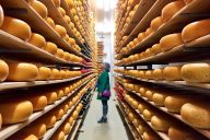 Mountainoak Cheese, Oxford County Cheese Trail, gouda, Ontario
