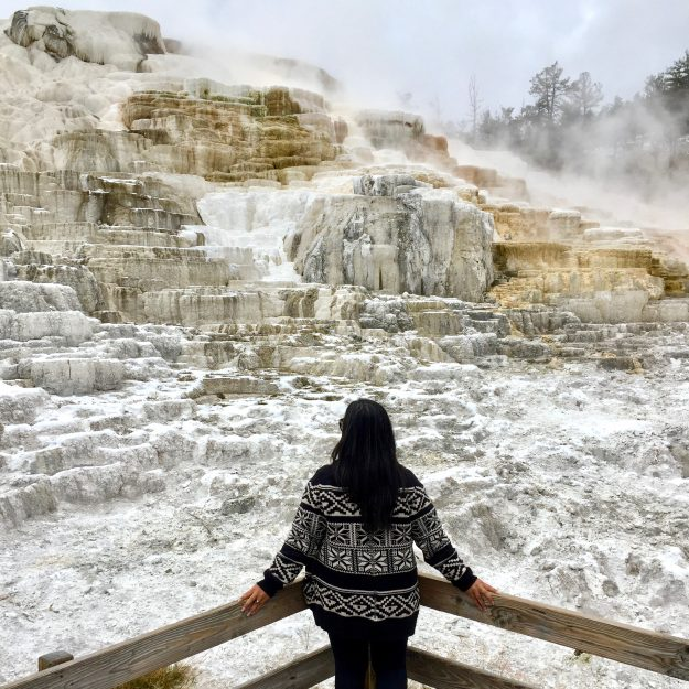 Road Trip Itinerary Through Wyoming, Mammoth Hot Springs