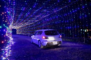 Celebrating The Holidays In Waterloo Region, Gift of Lights Bingemans